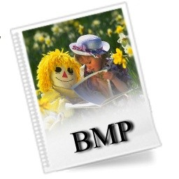 Bmp ファイルのアイコン 無料のアイコン 無料素材イラスト ベクターのフリーデザイナー